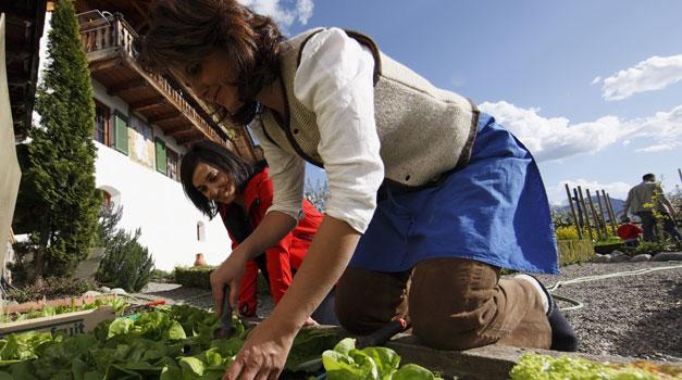 März - Gartenarbeit Fruhling Fruhlingsbeginn Tipps