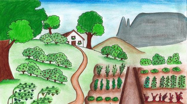 Malvorlagen Zum Bauernhof In Südtirol Roter Hahn