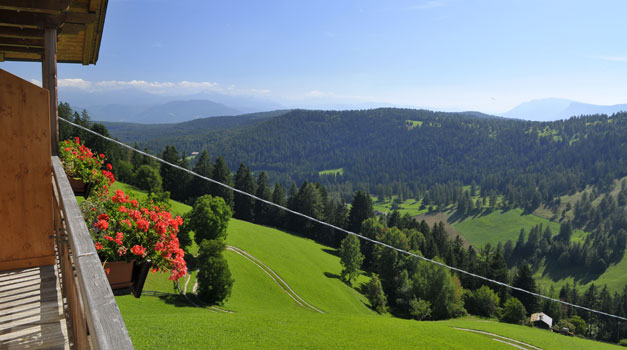Roter Hahn