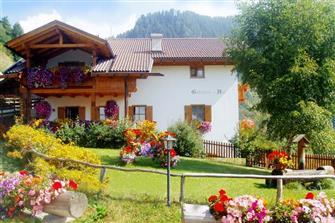 Ponyhof Gstatschhof